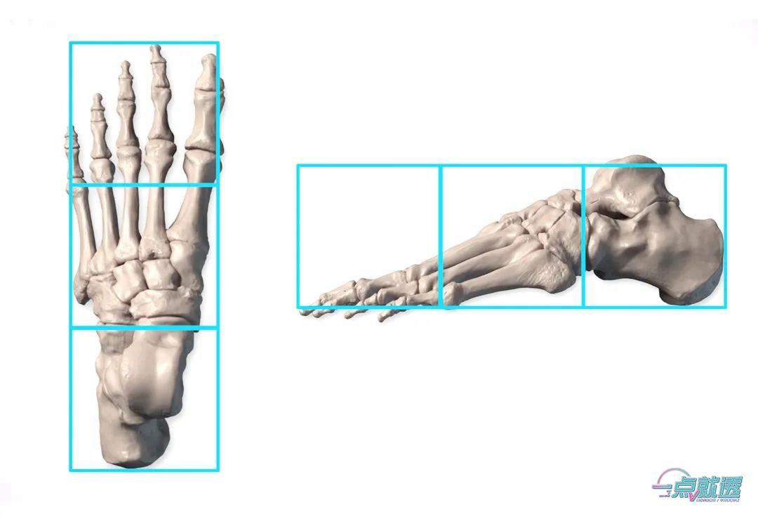 速写教程:脚的体块与动态分析 人艺美术